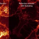 Mikroskop konfokalny - ModułtauGating