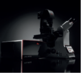 Mikroskop konfokalnySTELLARIS 8